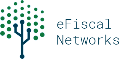 eFiscal Networks